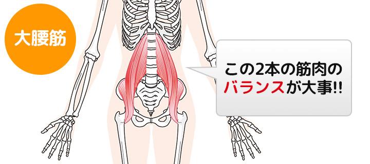 大腰筋のこの2本の筋肉バランスが大事!
